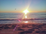 https://kaleidoscopesoup.com/venice-beach